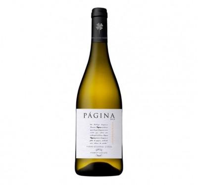 Página Sauvignon Blanc 2015 Branco 0.75L
